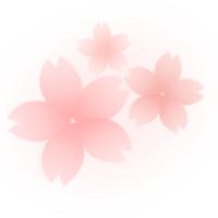 桜の花びらイラスト