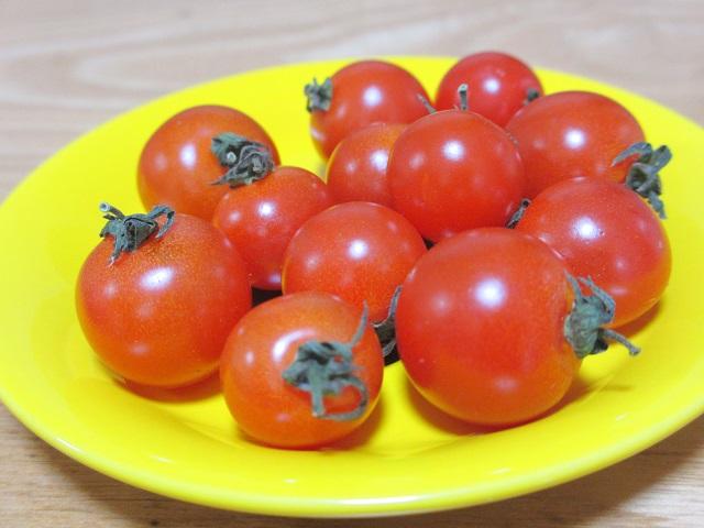 MOZとトマト